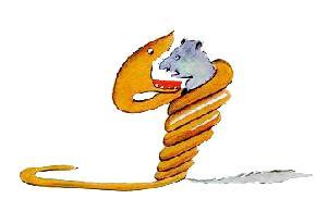 یک مار بوآ که دارد حیوانی را میبلعد